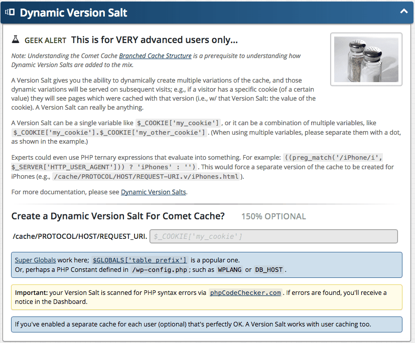 Feature: Dynamic Version Salt